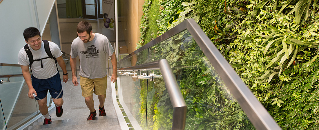 Photo: 2 students walking up the stairs next to the EcoWall.